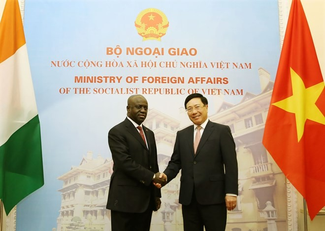 Vietnam values ties with Ivory Coast: Deputy PM - ảnh 1