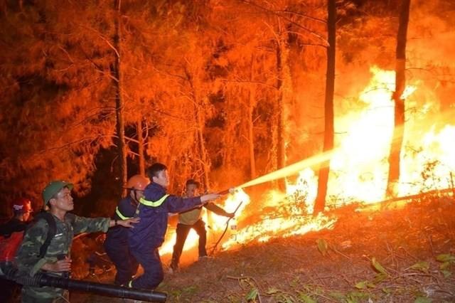 Forest fires ravage central region - ảnh 1