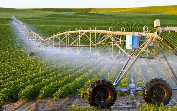 Technology application in agriculture strengthened - ảnh 1