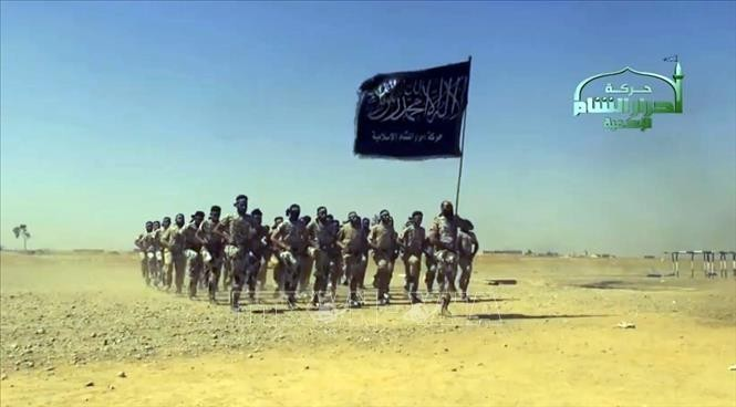 人权观察组织:150名伊斯兰国恐怖分子投降 - ảnh 1