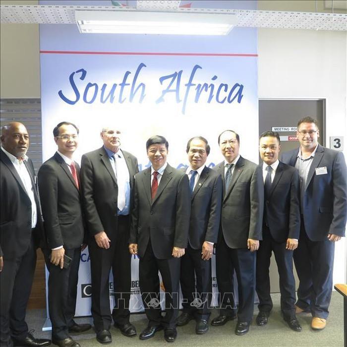 越南和南非为两国企业促进投资合作创造便利条件 - ảnh 1