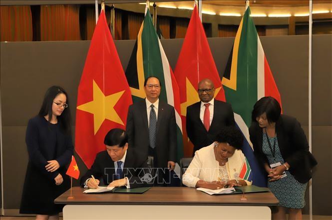 南非和越南加强双边贸易关系 - ảnh 1