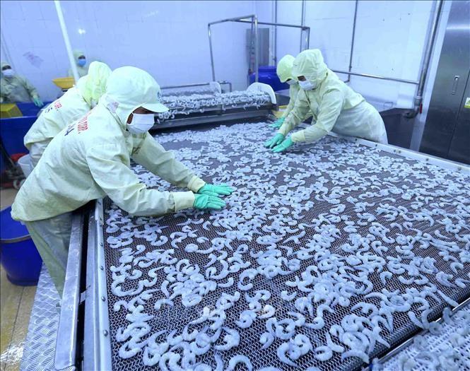 越南企业迎来扩大美国水产市场份额的机会 - ảnh 1