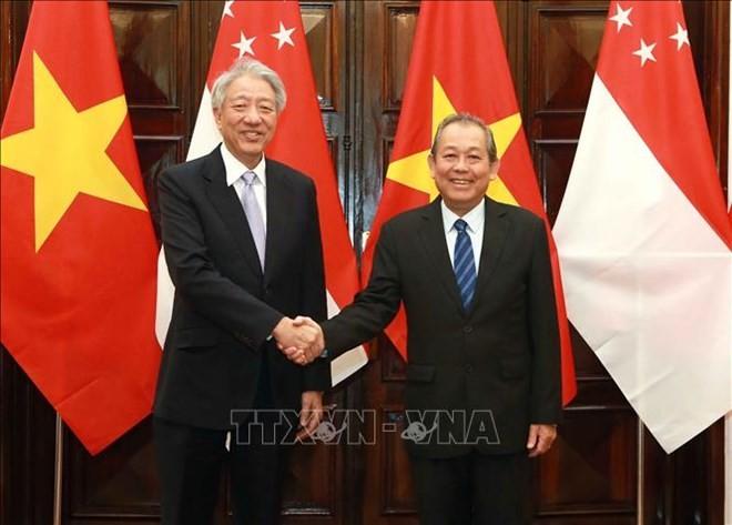 促进越南-新加坡战略伙伴关系 - ảnh 1