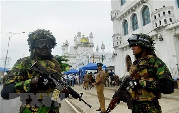 斯里兰卡取缔两个本土极端组织 - ảnh 1