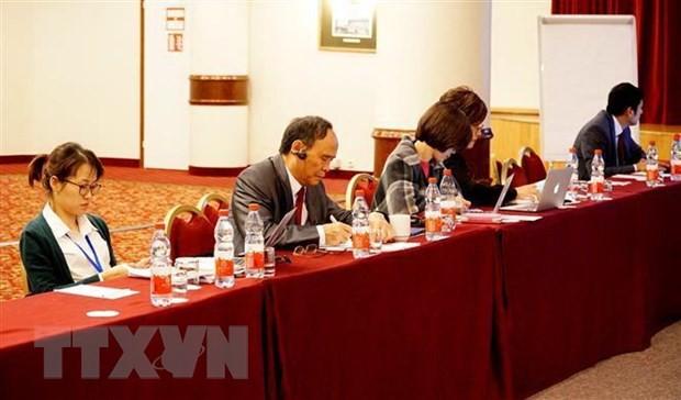 在俄罗斯举行的东海研讨会:提高社会组织的建设性作用 - ảnh 1