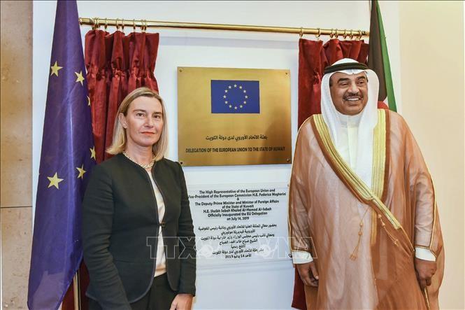 欧盟加强干预中东地区局势 - ảnh 1