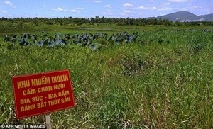 Agent Orange-related issues discussed by US Congress - ảnh 1