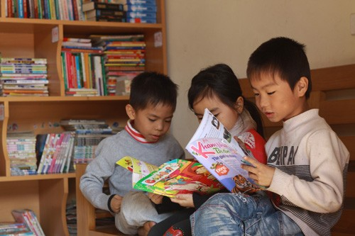 Free libraries inspire reading in rural areas - ảnh 2