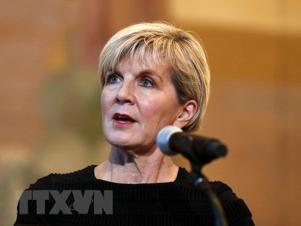 Australia wants to expand ties with Vietnam - ảnh 1