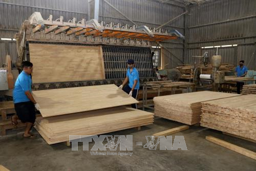 Vietnam eyes 9 billion USD in forest product exports - ảnh 1