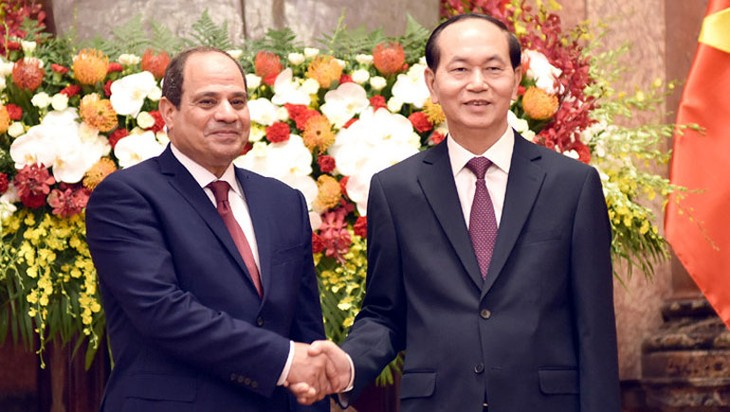 Egypt pledges optimal conditions for Vietnamese products    - ảnh 1