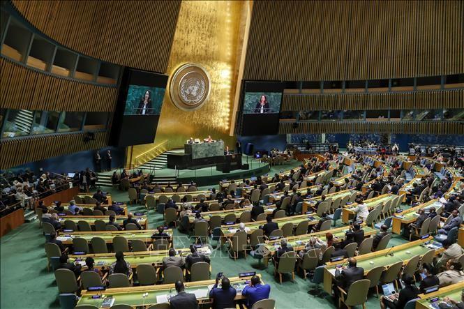 UN adopts Japan's antinuke resolution - ảnh 1