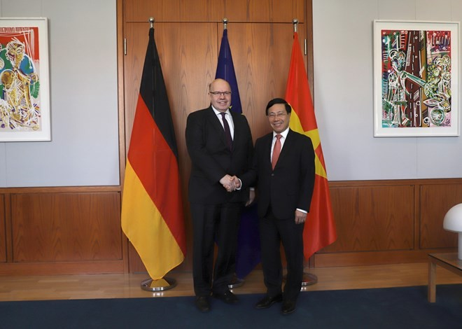 Deputy PM and Foreign Minister's Germany visit successful: diplomat - ảnh 1
