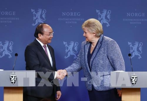 Vietnam, Norway encourage cooperation in maritime economy, renewable energy,  IT  - ảnh 2