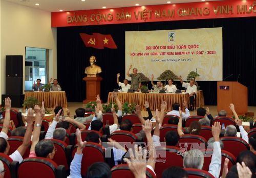 Vietnam busca desarrollar el sector de variedades ornamentales - ảnh 1