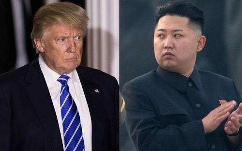Estados Unidos busca una solución diplomática para calmar tensiones con Corea del Norte - ảnh 1