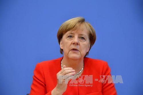Merkel y Trump instan a imponer nuevas sanciones contra Pyongyang - ảnh 1