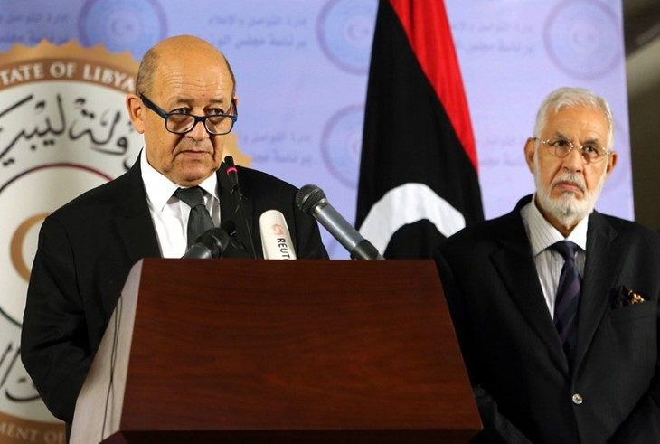 Francia destaca el compromiso nacional de resolver la crisis de Libia - ảnh 1