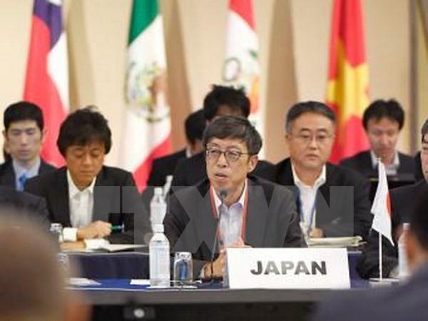 Países negociadores del TPP en busca de un nuevo acuerdo - ảnh 1