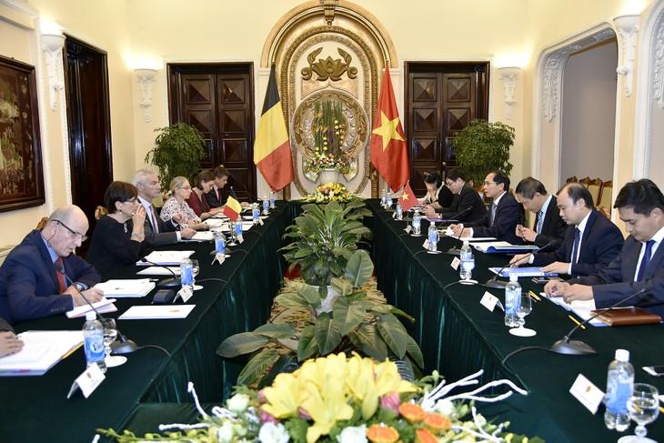 Vietnam y Bélgica realizan consultas políticas entre sus Cancillerías  - ảnh 1