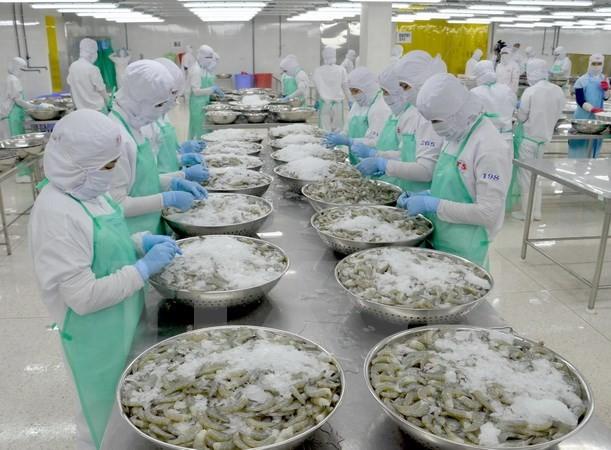 Fitch Group pronostica positivamente el crecimiento económico de Vietnam - ảnh 1