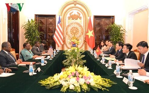 Vietnam y Liberia fomentan la cooperación bilateral  - ảnh 1