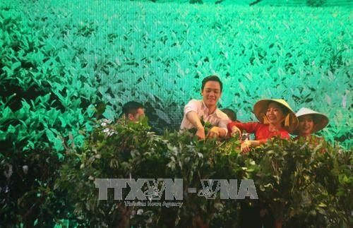 Semana cultural de seda y té de Bao Loc en Festival de Flores de Da Lat  - ảnh 1