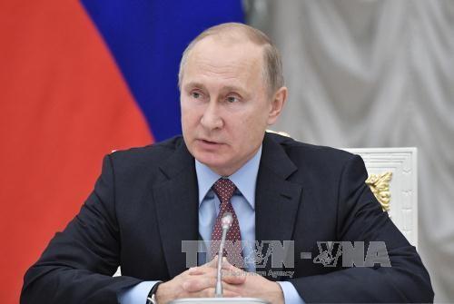 Putin presenta su candidatura a la presidencia de Rusia en 2018 - ảnh 1