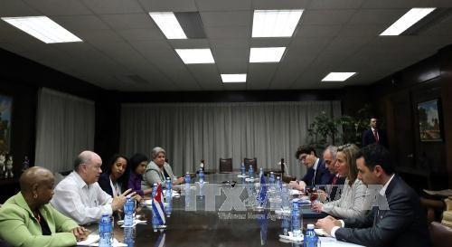 El bloqueo a Cuba no es la solución, afirma Federica Mogherini - ảnh 1