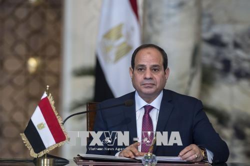 Elecciones presidenciales en Egipto: Abdel Fattah al-Sisi reelegido para un segundo mandato - ảnh 1