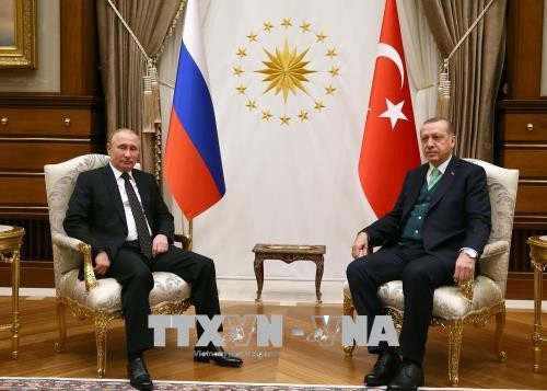 Putin y Erdogan se telefonean para debatir sobre el tema de Siria - ảnh 1