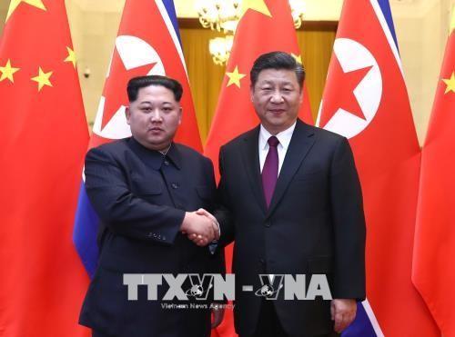 Corea del Norte y China ajustan visita de Xi Jinping a Pyongyang - ảnh 1