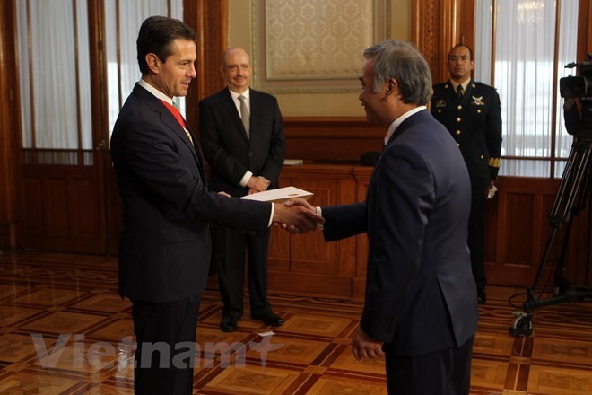 Presidente mexicano se compromete a fortalecer las relaciones integrales con Vietnam - ảnh 1
