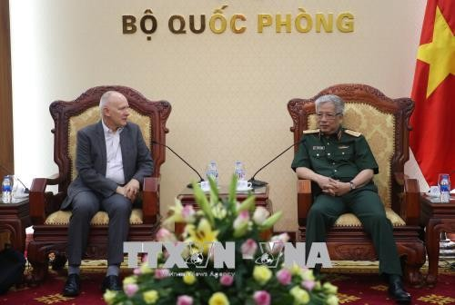 Funcionario vietnamita se reúne con jefe del Instituto de Estudios Estratégicos de Asia - ảnh 1
