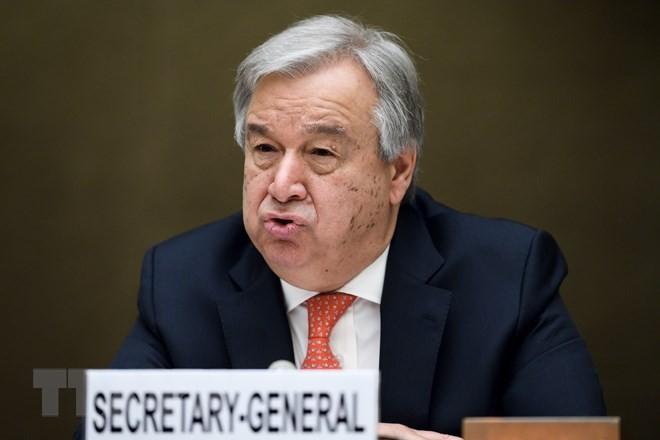 ONU y Rusia apoyan los esfuerzos de la UE para proteger el acuerdo nuclear iraní  - ảnh 1