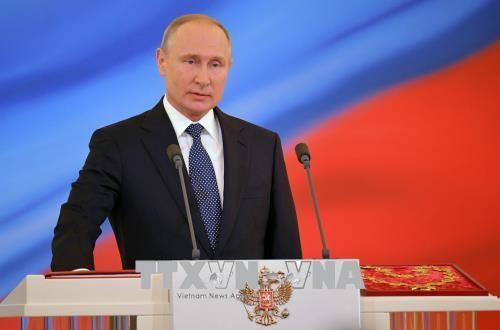 Vladimir Putin ratifica el nuevo Gobierno ruso - ảnh 1