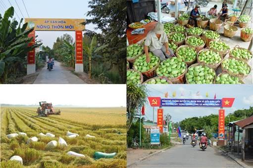 El 39% de las comunas vietnamitas cumplirán con los estándares del nuevo campo en 2018 - ảnh 1