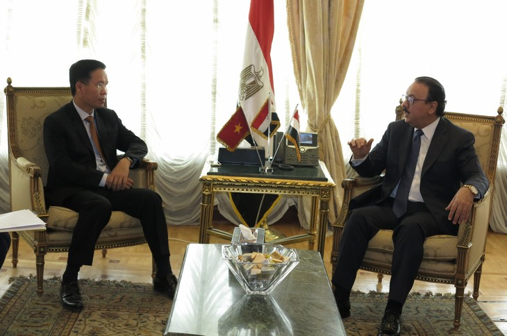 Vietnam y Egipto afianzan su cooperación multifacética  - ảnh 1