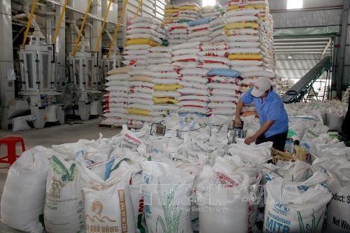 Aumentan exportaciones de arroz de Vietnam a Malasia  - ảnh 1