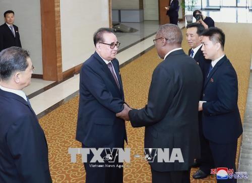 Cuba y Corea del Norte refuerzan las relaciones bilaterales - ảnh 1