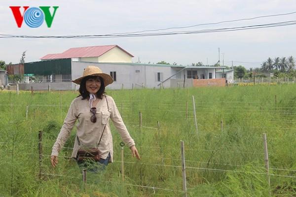"Viajes de ""experiencias rurales"" en Ninh Thuan - ảnh 1"