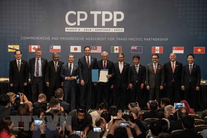 Vietnam y otros países impulsan la entrada en vigor del CPTPP - ảnh 1