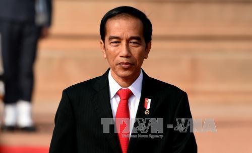 Presidente indonesio invita a los líderes coreanos a la apertura de los Juegos Asiáticos 2018 - ảnh 1