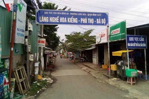 Eliminan los obstáculos para promover el desarrollo de las aldeas artesanales en Can Tho - ảnh 1