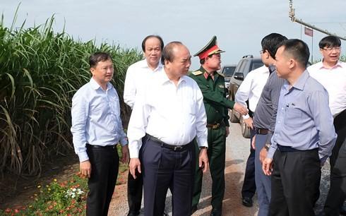 Premier vietnamita visita modelos agrícolas de alta tecnología en Tay Ninh - ảnh 1