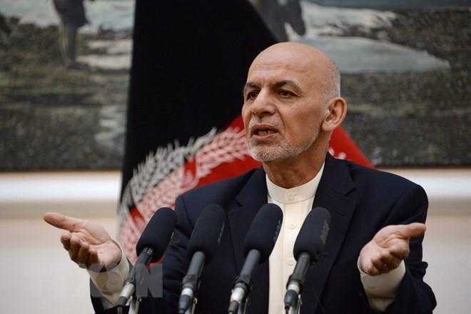 Comunidad internacional acoge con beneplácito la propuesta de alto el fuego del presidente afgano - ảnh 1