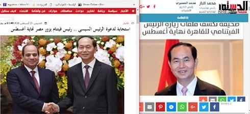 Prensa egipcia reitera importancia de visita del presidente vietnamita para su nación y África - ảnh 1