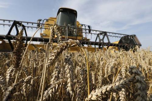 Exhortan a la administración de Trump a facilitar la exportación agrícola de Estados Unidos a Cuba  - ảnh 1