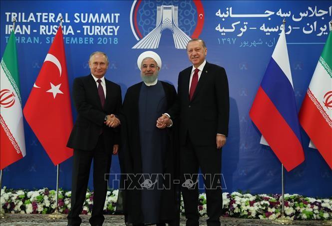 Turquía, Rusia e Irán piden una solución política al conflicto sirio - ảnh 1